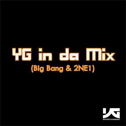 2NE1 & Big Bang - YG In Da Mix Part 1 cover